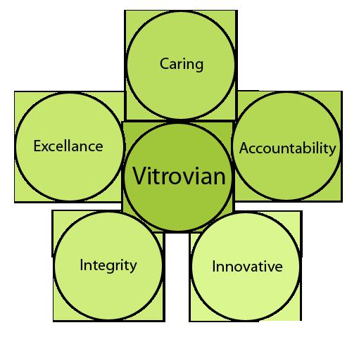 Vitrovian_Values_2